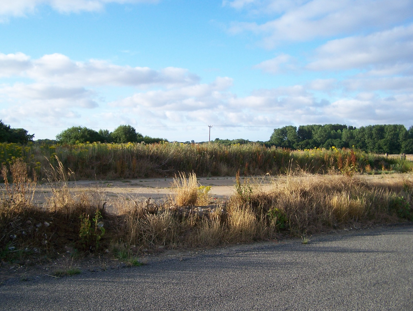 Extreme north side of 01:19 runway, now overgrown 14:07:2006.JPG